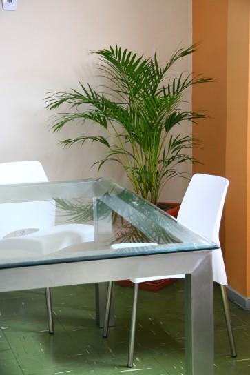 glass repair, milwaukee, plate glass repair,